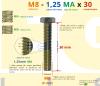 PARAFUSO SEXTAVADO ROSCA INTEIRA M8 1,25 MA X 30 DIN 933 INOX A4